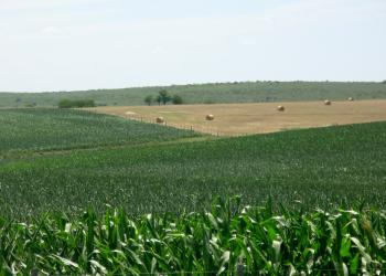 farmland3